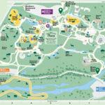 Bronx Zoo Map Printable Map Of Bronx Zoo New York USA