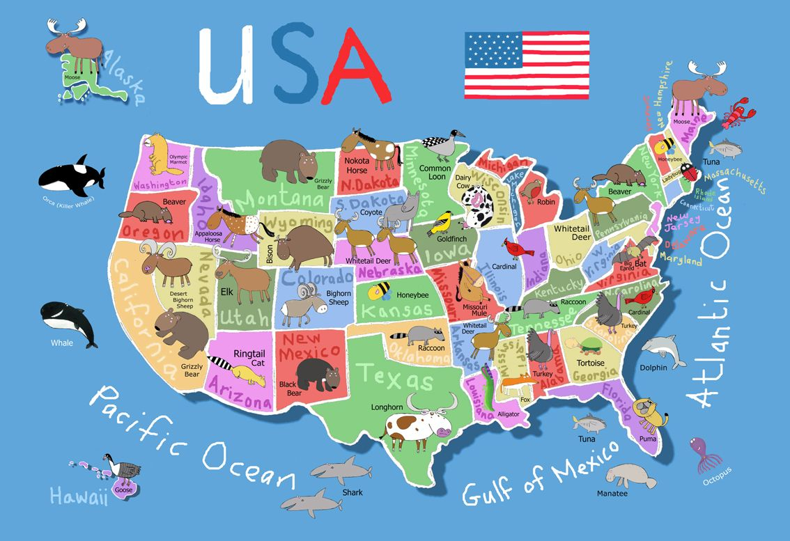 Ravensburger With Images Usa Map United States Map