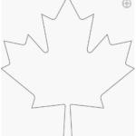 Canada Maple Leaf Template