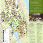 Lincoln Park Zoo Map