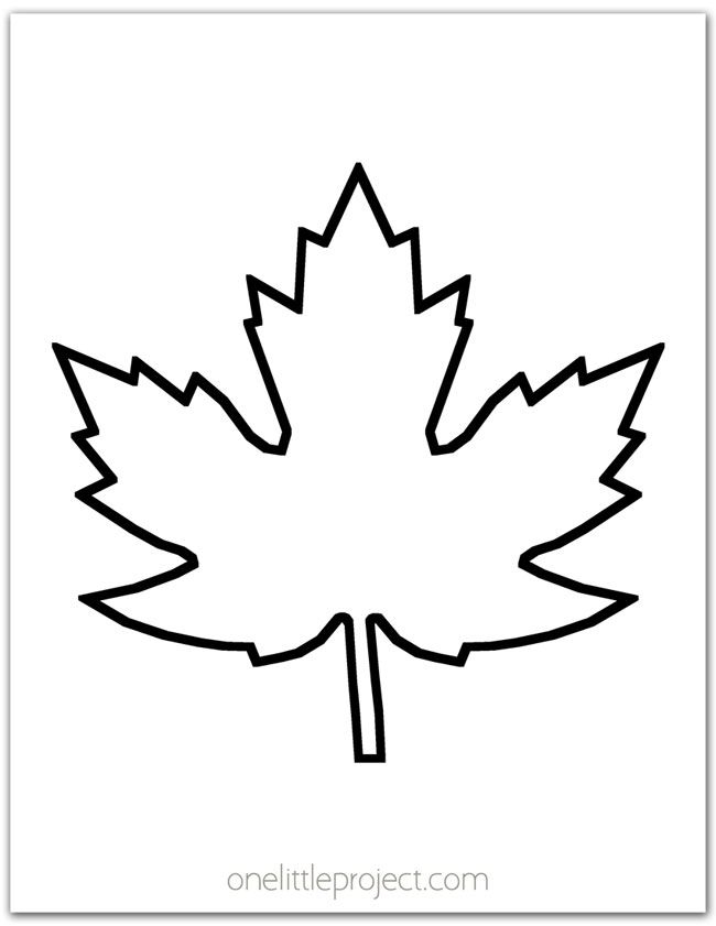 Maple Leaf Template More Than 20 Free Printable Fall